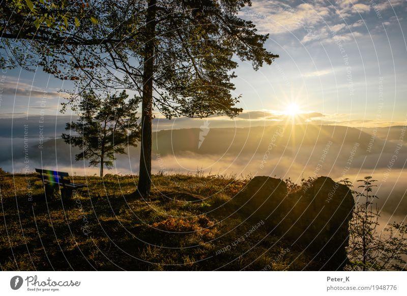 Sonnenaufgang am Albtrauf Himmel Natur Pflanze Baum Landschaft Erholung Wolken ruhig Umwelt Herbst Freiheit Tourismus Felsen Zufriedenheit Nebel
