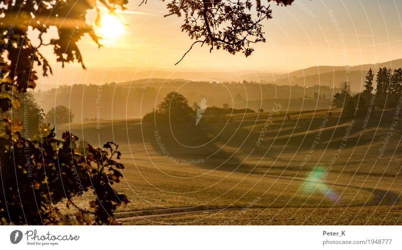 Sonnenaufgang auf der Schwbischen Alb Umwelt Natur Landschaft Wolkenloser Himmel Sonnenuntergang Sonnenlicht Herbst Schönes Wetter Feld Hügel Menschenleer