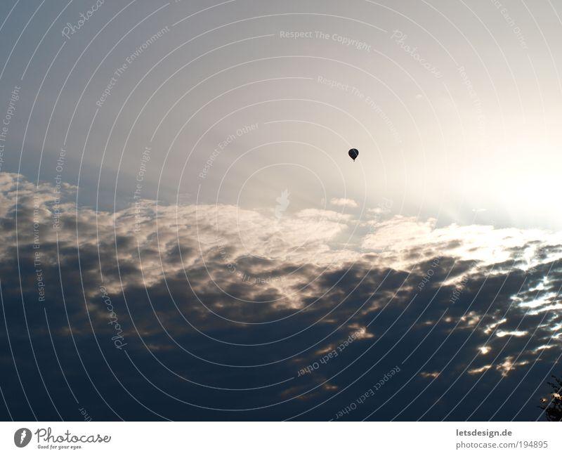 Über den Wolken Himmel blau Ferne Landschaft Luft fliegen Perspektive Luftverkehr beobachten Unendlichkeit Ballone Verkehrsmittel Umwelt nur Himmel