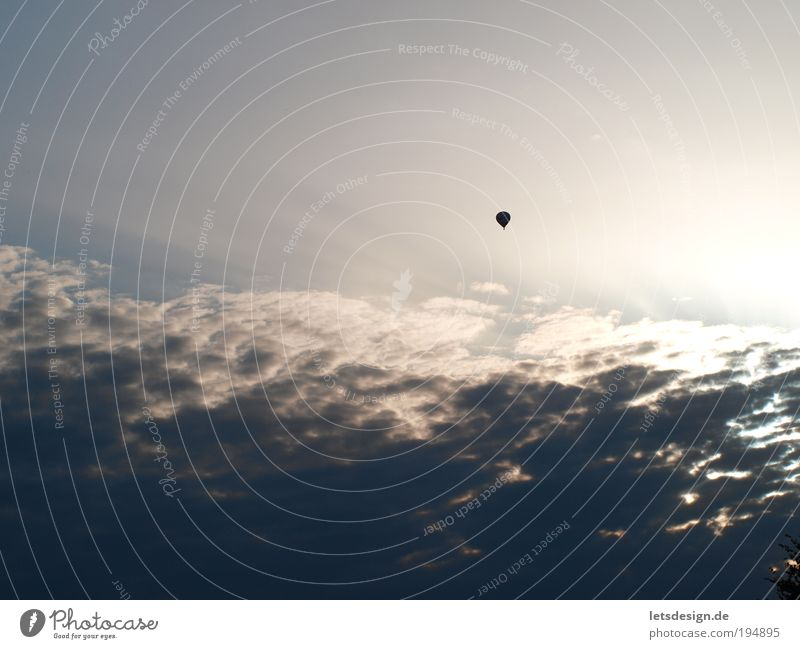 Über den Wolken Himmel blau Wolken Ferne Landschaft Luft fliegen Perspektive Luftverkehr beobachten Unendlichkeit Ballone Verkehrsmittel Umwelt nur Himmel