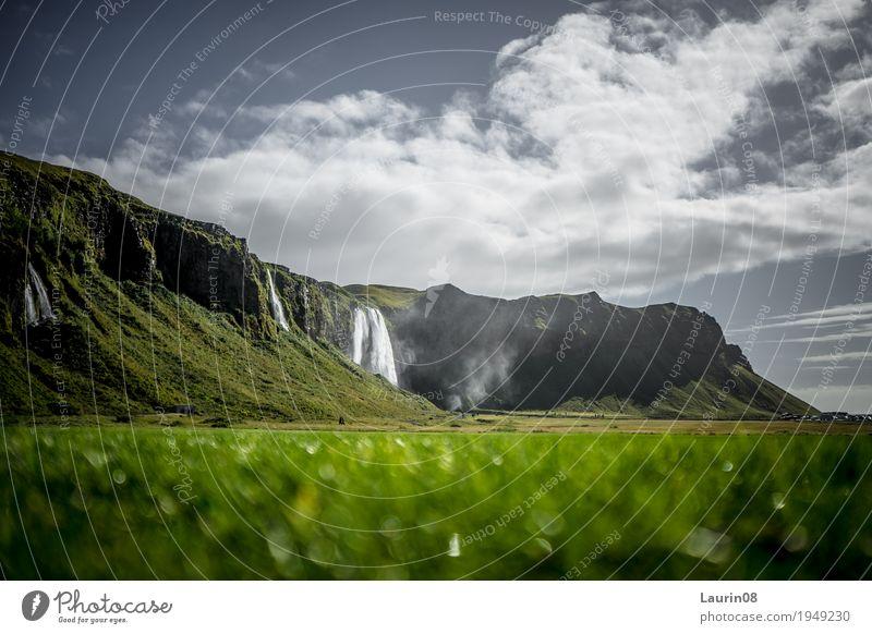 Seljalandsfoss Wasserfall auf Island Natur Ferien & Urlaub & Reisen alt Pflanze Sommer schön Landschaft Erholung Ferne Berge u. Gebirge Gras Freiheit Tourismus
