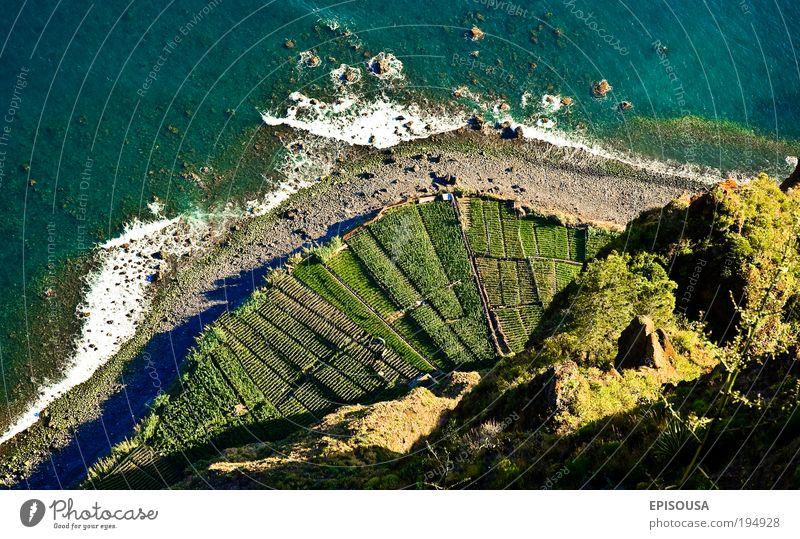 schön Meer Landschaft Europa Tourismus Landwirtschaft Ackerbau Tourist Portugal Aussicht Klippe Atlantik Mensch Luft