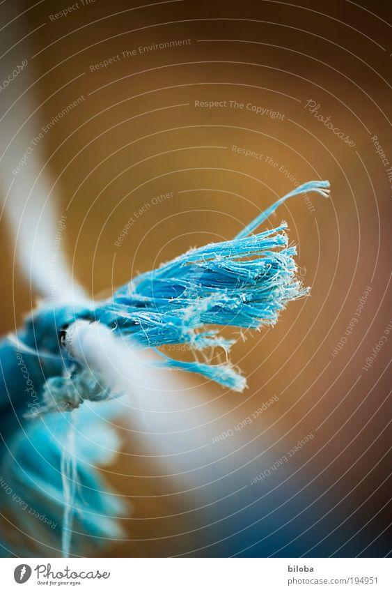 Verknüpfung Gartenarbeit Handel Handwerk Telekommunikation Zeichen fest blau braun Verbundenheit Partnerschaft Computernetzwerk Sozialer Brennpunkt sozial