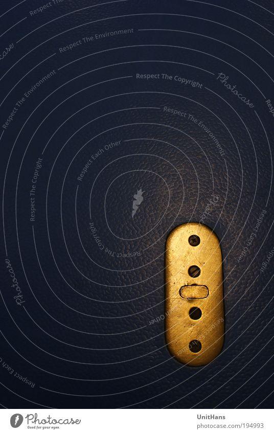 Lederschloss Metall Gold sitzen elegant fest retro weich Sicherheit Geborgenheit Design Frieden Gelassenheit Farbfoto Innenaufnahme Studioaufnahme Nahaufnahme