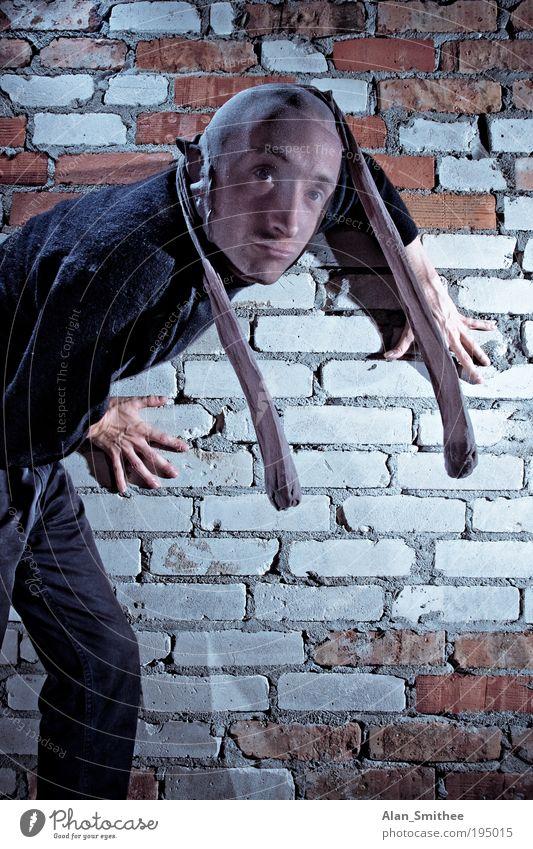 catburglar Mensch schwarz Wand Mauer maskulin Suche beobachten Karneval verstecken Strumpfhose Strümpfe Pullover Hinterhof Dieb verkleiden Kriminalität