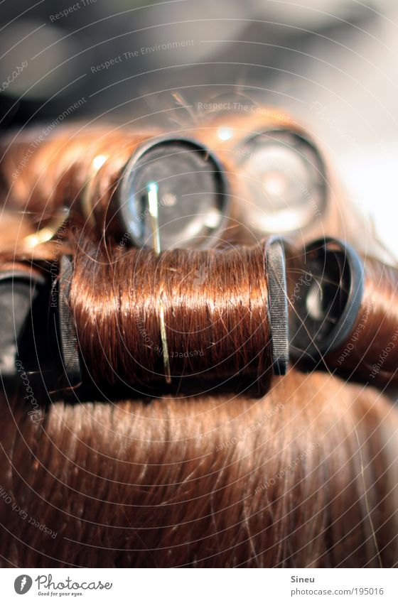 Ganz schön aufgedreht. Mensch feminin Kopf Haare & Frisuren 1 rothaarig langhaarig Locken Lust Gelassenheit geduldig ruhig elegant Stil Lockenwickler Schminke