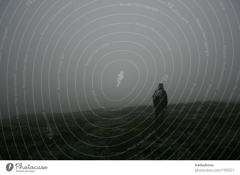 Hier ist Norden Landschaft Nebel Moor Sumpf schlechtes Wetter