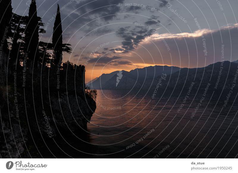 Mystischer Sonnenuntergang Landschaft Wasser Himmel Wolken Sonnenaufgang Sommer Herbst Schönes Wetter Baum Felsen Berge u. Gebirge Seeufer Bucht Meer Gardasee