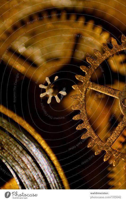 Clockwork Zeitmaschine Uhr warten alt braun gold Pünktlichkeit ruhig Nostalgie Zahnrad Uhrwerk Studioaufnahme Makroaufnahme