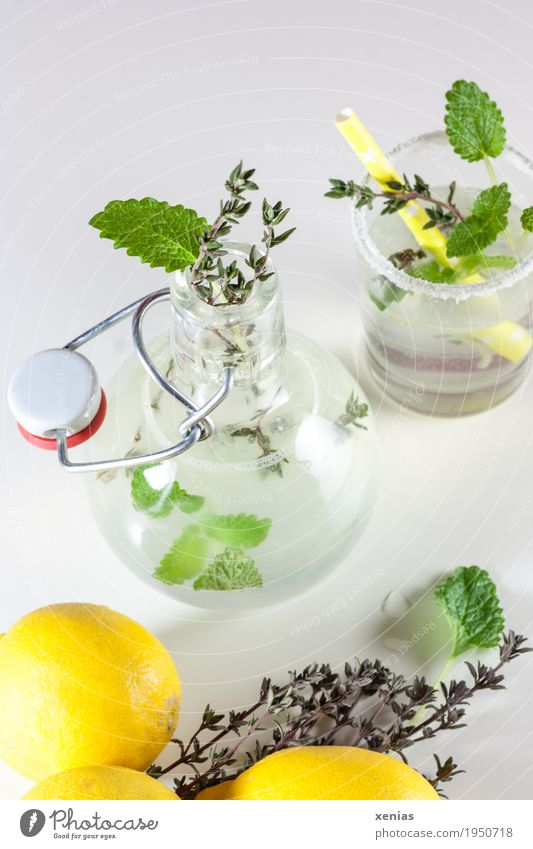 selbstgemachte Zitronenlimonade mit Minze und Thymian auf weißem Grund Trinkwasser Kräuter & Gewürze Getränk Erfrischungsgetränk Limonade Flasche Glas Trinkhalm