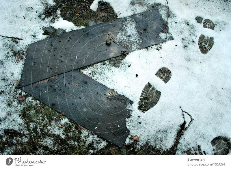 spuren im Schnee Landschaft Umwelt Spuren entdecken Partnerschaft Natur Aktion