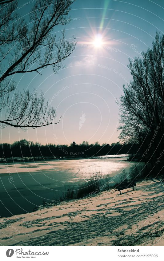 Winter Wonderland Natur Wasser schön Himmel Baum Winter ruhig Landschaft Zufriedenheit Beleuchtung Umwelt ästhetisch Bank Sträucher Spaziergang