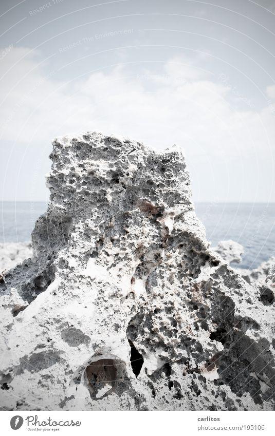 Möwe. Gerade weggeflogen . Umwelt Natur Urelemente Wasser Horizont Sommer Schönes Wetter Wärme Dürre Felsen Küste Riff Meer Mittelmeer trist blau weiß