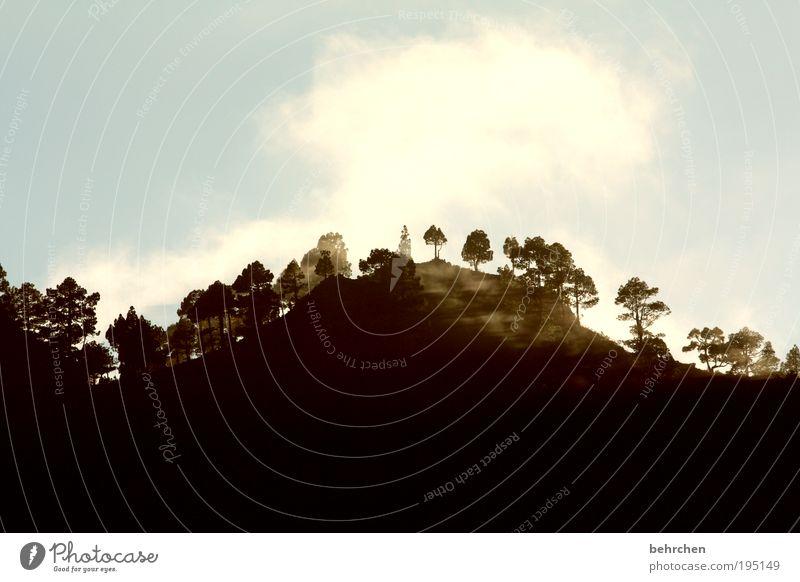 licht und schatten Himmel Natur Ferien & Urlaub & Reisen Baum Landschaft Wolken Ferne Berge u. Gebirge Freiheit Zufriedenheit Tourismus Nebel Fröhlichkeit