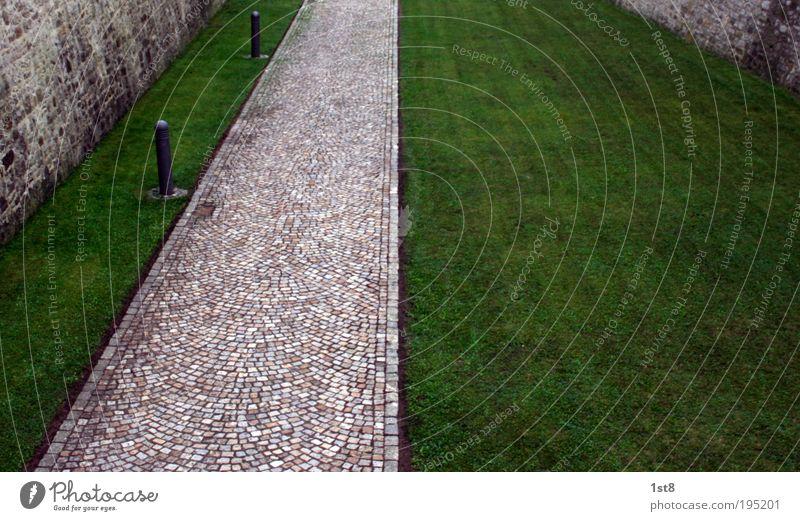 wo ist helga? Natur grün Straße Wand Umwelt Gras Wege & Pfade Mauer frisch ästhetisch Sauberkeit Bauwerk Kopfsteinpflaster Wahrzeichen Sehenswürdigkeit Pflastersteine