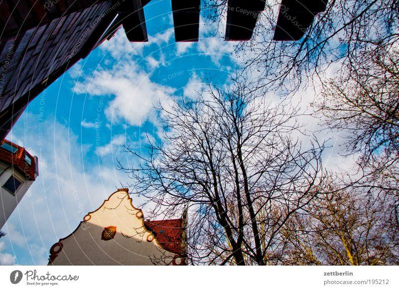 Steglitz Himmel Baum Sonne Wolken Haus Architektur Ast Zweig Dach März Dachgiebel Natur Schöneberg