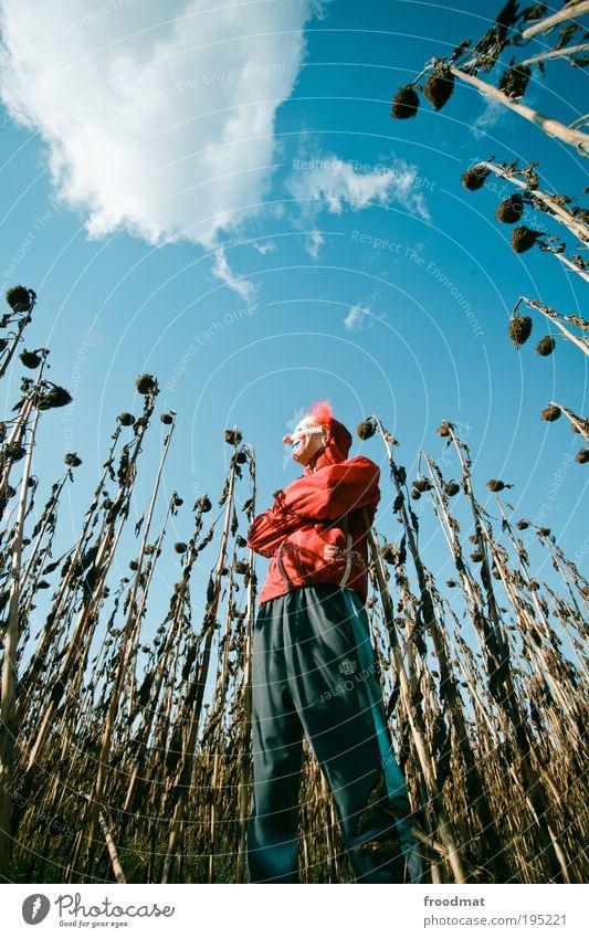 think different Mensch Wolken Erholung Leben Herbst träumen maskulin außergewöhnlich Coolness bedrohlich nachdenklich beobachten gruselig Gelassenheit entdecken skurril