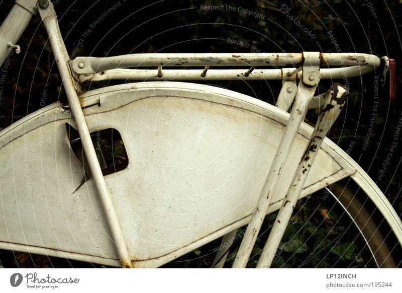 [LG10.3] I want to ride my ....... alt Ferien & Urlaub & Reisen Umwelt Leben Freiheit Stil Kunst Fahrrad dreckig Ausflug retro Rost trashig Straßenverkehr Klimawandel schlechtes Wetter