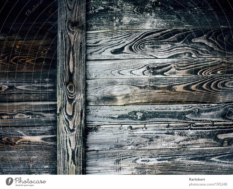 200 years Natur dunkel Stil Holz Linie Armut Design verrückt Lifestyle Wandel & Veränderung Dekoration & Verzierung Schutz Häusliches Leben Vergänglichkeit Streifen Hütte