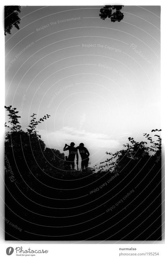 DarkPark IV Natur alt Ferien & Urlaub & Reisen Freude Wald Erholung Wiese dunkel Umwelt Landschaft träumen Stimmung Park Kunst Ausflug ästhetisch