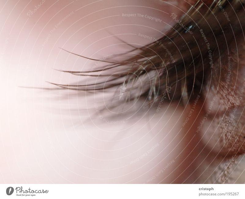 Machs Äuglein zu schön Haare & Frisuren Sinnesorgane Erholung Auge rosa rot Wimpern Retroring Detailaufnahme Makroaufnahme Schwache Tiefenschärfe