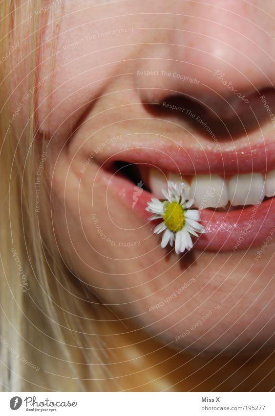 Lach mich an ! Mensch Jugendliche schön Sonne Sommer Blume Freude Gesicht Wiese Gefühle Glück lachen Stimmung Zufriedenheit Mund