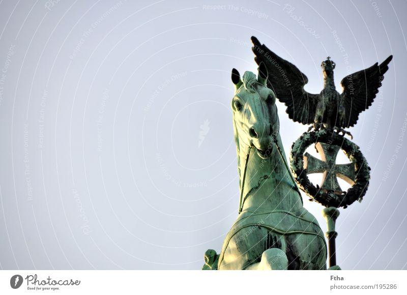 Pferd und Vogel Statue Sehenswürdigkeit Brandenburger Tor Quadriga alt ästhetisch Kupfer Grünspan Grünstich Farbfoto Außenaufnahme Tag Detailaufnahme