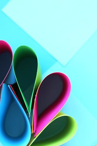 Papierblätter schön ruhig Freude Gefühle Lifestyle Hintergrundbild Stil Spielen Design hell Freizeit & Hobby träumen Wachstum elegant Ordnung ästhetisch