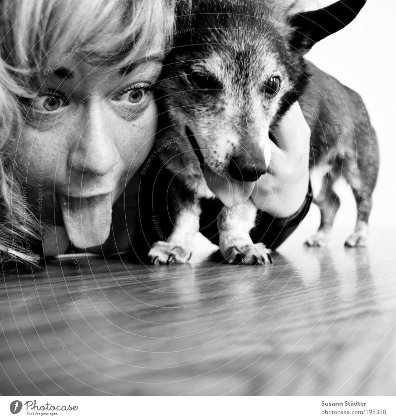 Beste Freunde. Junge Frau Jugendliche Kopf Haare & Frisuren Gesicht 18-30 Jahre Erwachsene Tier Haustier Hund Tiergesicht Fell Krallen Pfote festhalten Lächeln