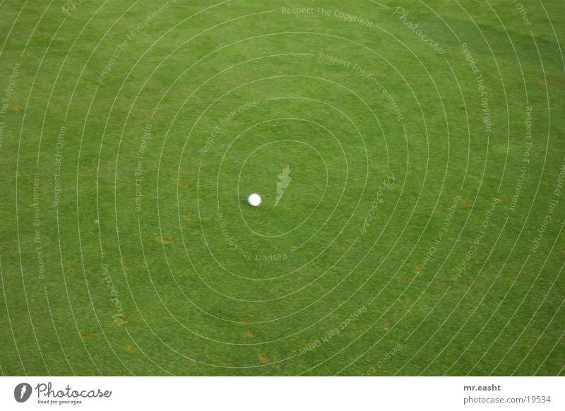 Golfball weiß Sport Golfplatz Ball Rasen ruhend