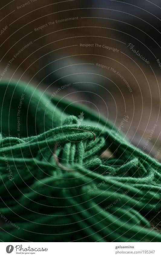 und genau hinsehen Schönes Wetter Stoff Wolle Schal elegant wild grün Farbfoto mehrfarbig Außenaufnahme Sonnenlicht Unschärfe