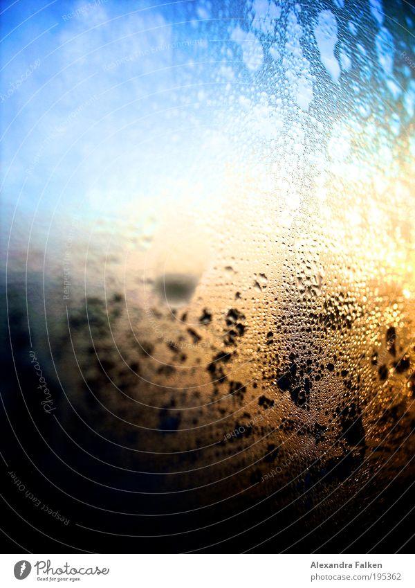 Beschlagen Schönes Wetter frisch Tau Wasser Morgendämmerung Fensterscheibe Tropfen blau Blauer Himmel Sonne Sonnenlicht Dämmerung Sonnenaufgang feucht nass