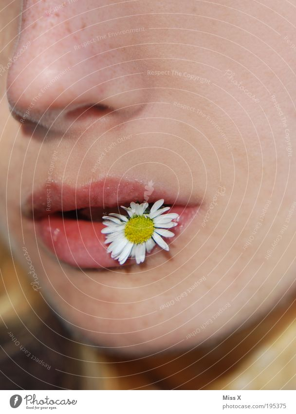 Blumenkind Mensch Natur Jugendliche schön Sommer Blume Freude Gesicht Erwachsene feminin Wiese Frühling Park Mund Fröhlichkeit 18-30 Jahre