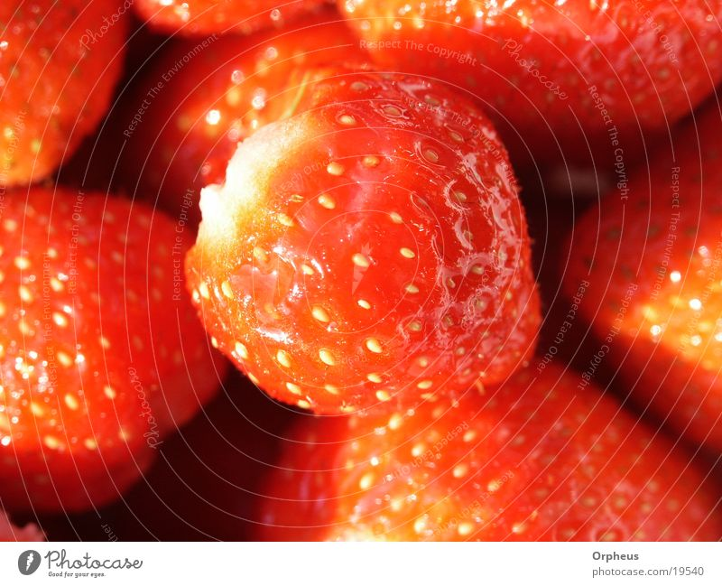 Erdbeer rot Sommer Ernährung Gesundheit Frucht Erdbeeren Vegetarische Ernährung