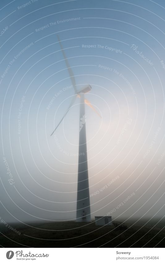 Der weiße Riese Himmel Umwelt Herbst Nebel Feld Energiewirtschaft Technik & Technologie groß hoch Windkraftanlage Umweltschutz Erneuerbare Energie