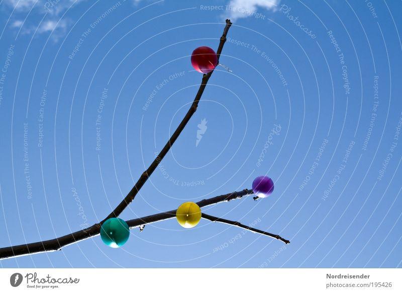 Eier von unten Lifestyle Freude harmonisch Feste & Feiern Ostern Natur Himmel Frühling Schönes Wetter Pflanze Baum Garten Zeichen beobachten hängen Wachstum