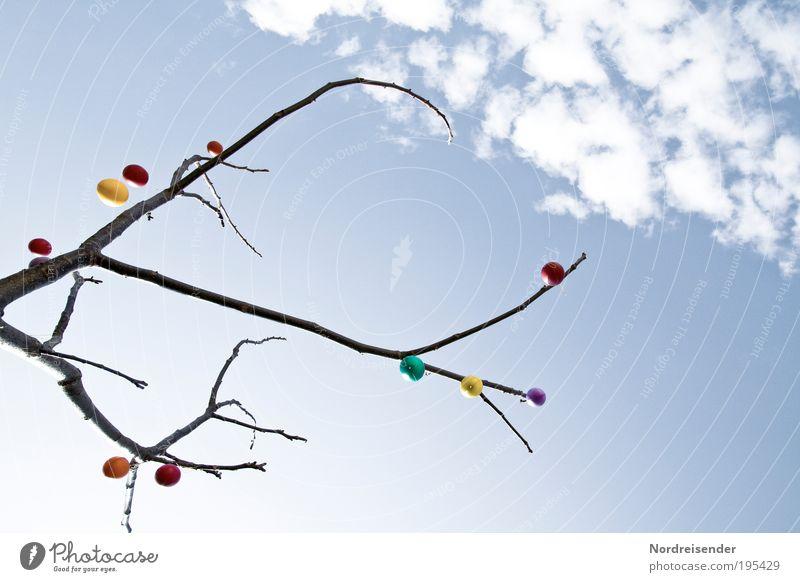 Eier von unten II Natur Himmel Baum Pflanze Freude Gefühle Stil Frühling Zufriedenheit Stimmung Religion & Glaube Feste & Feiern Lifestyle Fröhlichkeit Ostern Lebensfreude