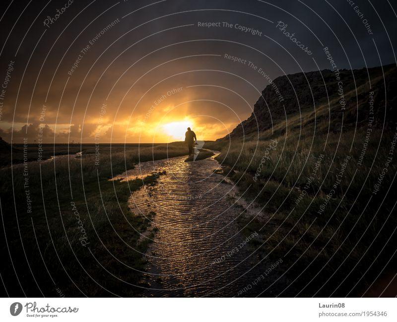 Hiker in the sunset Ausflug Abenteuer Ferne Freiheit Sonne Berge u. Gebirge wandern maskulin Mann Erwachsene 1 Mensch 30-45 Jahre Natur Landschaft Sonnenaufgang