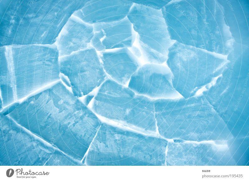 *600* Eisschnecke Natur weiß Haus Umwelt kalt Schnee Eis Hintergrundbild leuchten Frost Spirale Muster Isolierung (Material) Expedition Winterurlaub