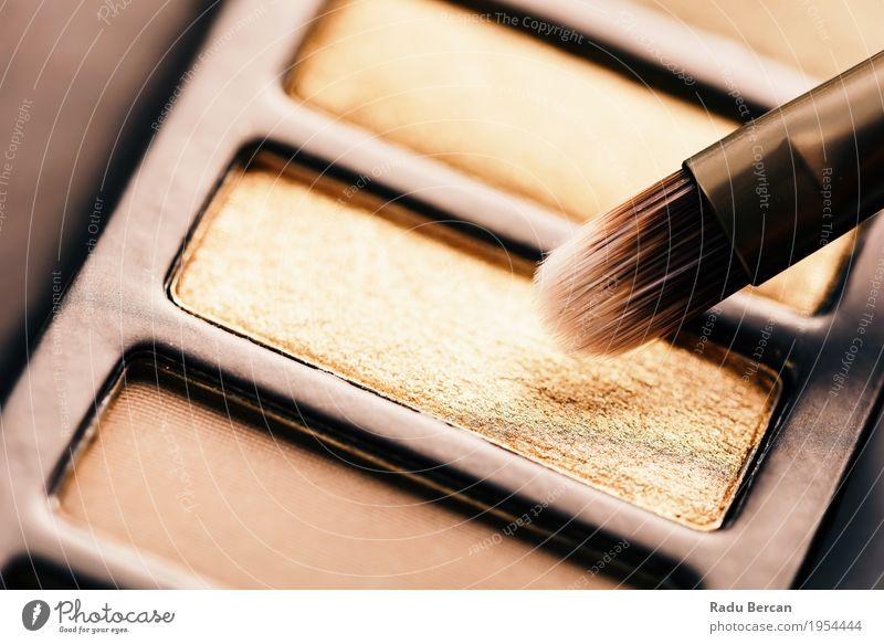 Professionelle Make-up Pinsel und Lidschatten Farbpalette Farbe Stadt schön Gesicht gelb natürlich feminin Stil Kunst Mode braun modern gold elegant ästhetisch