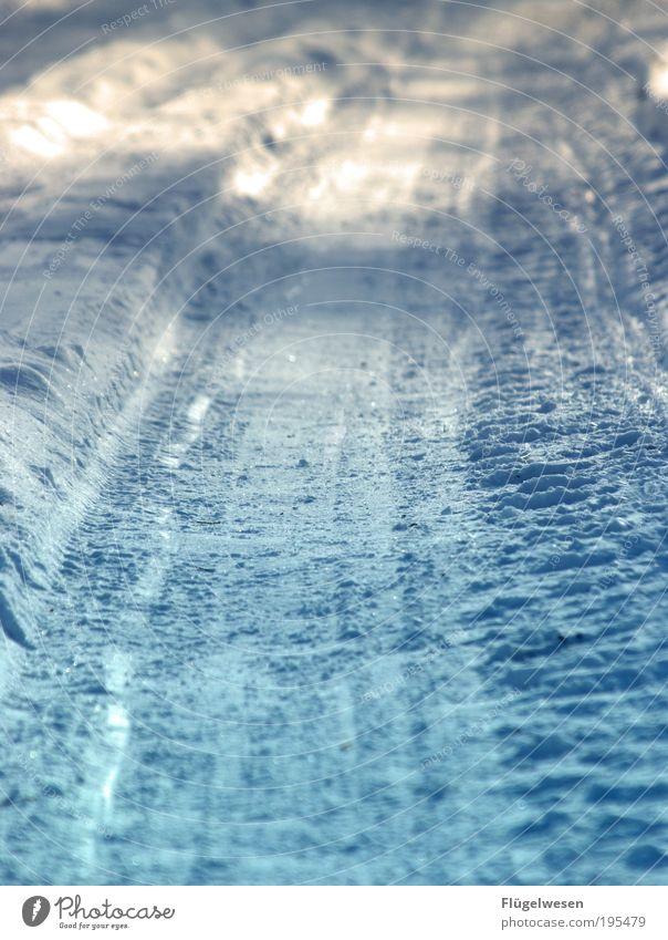 Ein Tag im Januar 2535! Natur Ferien & Urlaub & Reisen Winter kalt Umwelt Schnee Wetter Klima bedrohlich Coolness entdecken Jagd Umweltschutz Skier frieren