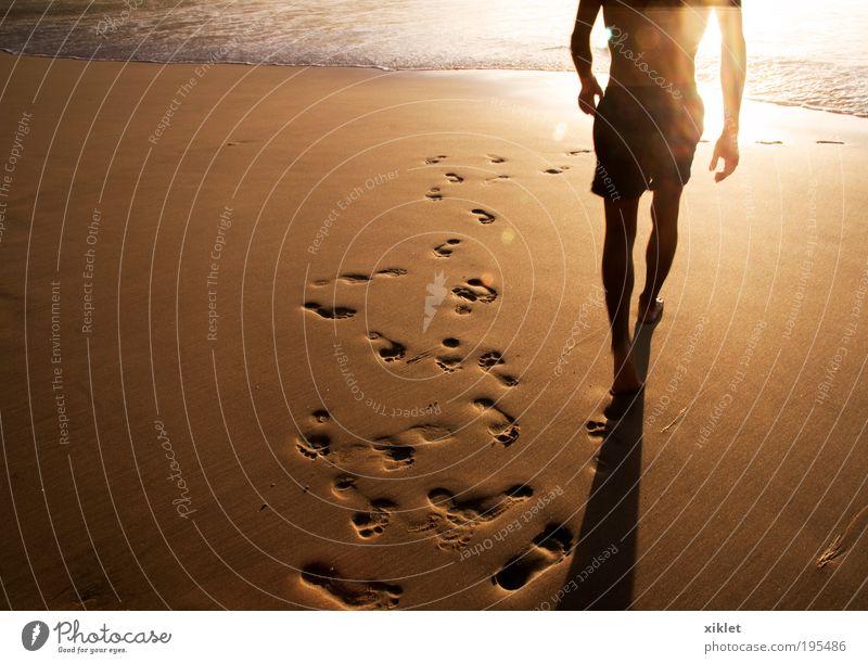 Natur Jugendliche schön Sonne Ferien & Urlaub & Reisen Sommer Strand ruhig Erwachsene Einsamkeit Bewegung Wärme lustig gehen laufen natürlich