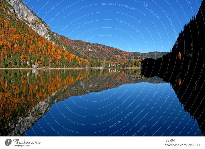 Pragser Wildsee in den Dolomiten, Südtirol, Italien Umwelt Natur Landschaft Pflanze Wasser Himmel Sonnenlicht Herbst Schönes Wetter Baum Grünpflanze Lärche Wald