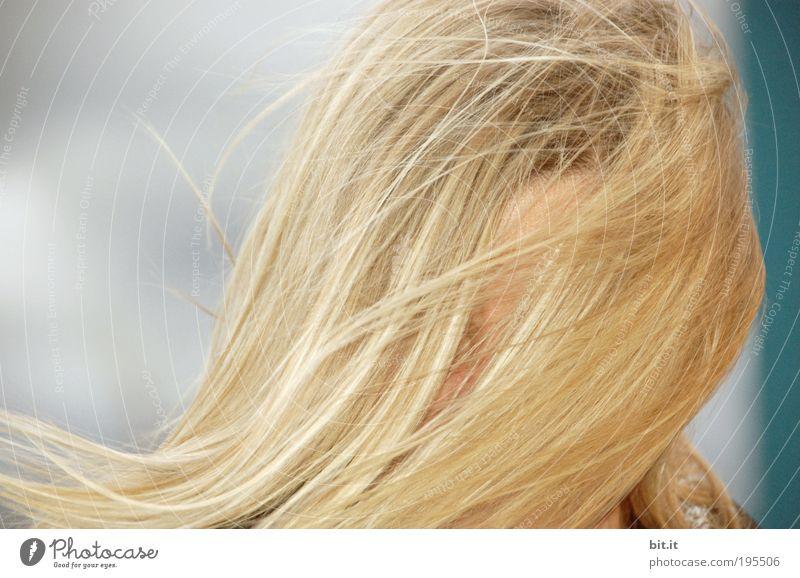 WER BIN ICH? Frau Mensch Jugendliche Erwachsene Einsamkeit feminin Gefühle Kopf Haare & Frisuren blond Wind Angst wild Sicherheit Schutz verstecken
