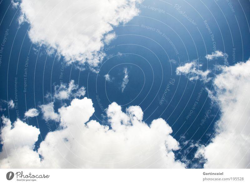 Der Sommer kann kommen Ferien & Urlaub & Reisen Umwelt Natur Luft Himmel Wolken Klima Wetter Schönes Wetter Wind Wärme weich blau weiß Glück Fernweh Erholung