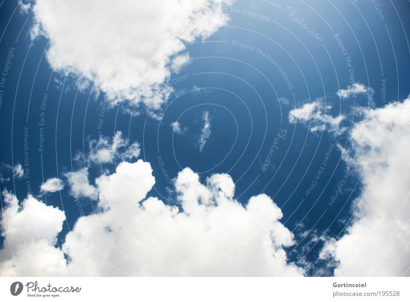 Der Sommer kann kommen Natur Himmel weiß blau Sommer Ferien & Urlaub & Reisen Wolken Erholung Freiheit Glück Wärme Luft Wind Wetter Umwelt