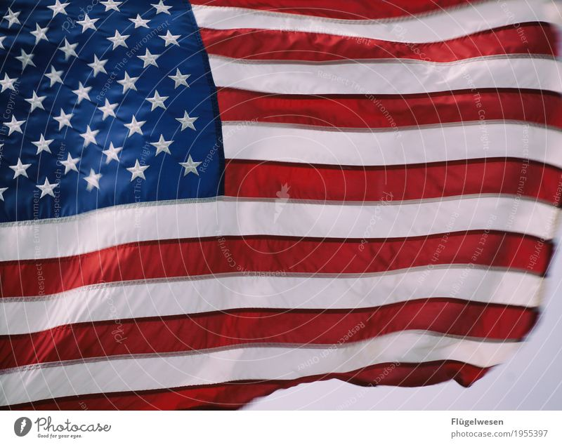 Amerika wohin? [2] Ferien & Urlaub & Reisen Wolken Ferne Freiheit Tourismus Ausflug Wind USA Zukunft Abenteuer Fahne Stars and Stripes Sightseeing Krieg