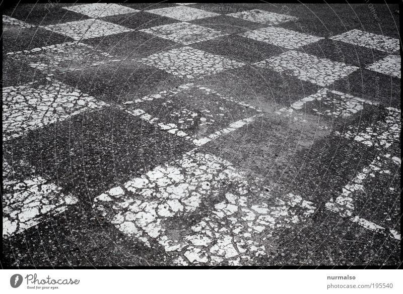 Polnisch Schach Straße dunkel Spielen Umwelt Denken träumen Park Kunst Freizeit & Hobby Schilder & Markierungen Platz Erfolg authentisch Kommunizieren