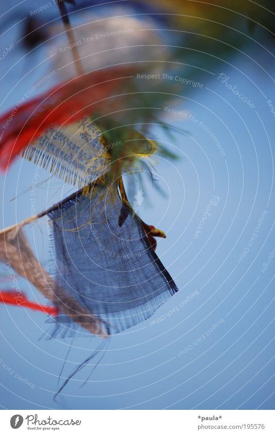 Fahnengeflatter Sommer Wolkenloser Himmel Wind Schriftzeichen Bewegung fliegen hängen träumen frisch Unendlichkeit weich blau gelb rot Glück Lebensfreude