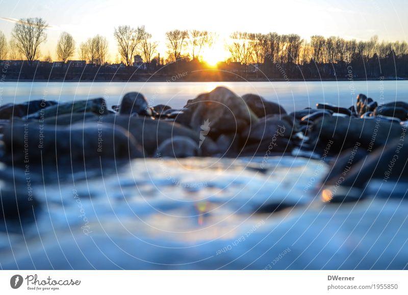 Vater Rhein Umwelt Natur Landschaft Wasser Wetter Eis Frost Flussufer dunkel kalt nass blau weiß ruhig Traurigkeit Angst Hoffnung Horizont Stein Farbfoto